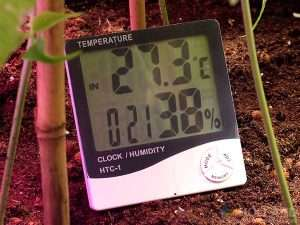 Keeping Humidity Under Control | Root Grow Bloom